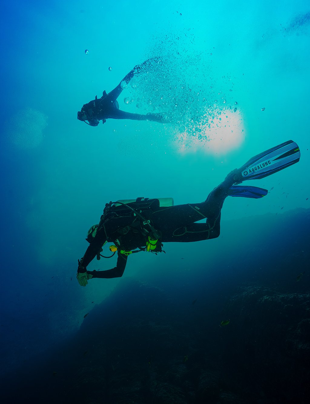 holiday divers gozo